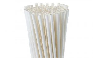 Best Compostable Straws