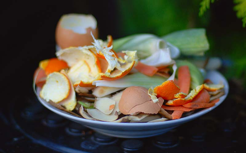 How To Safely Compost Eggshells